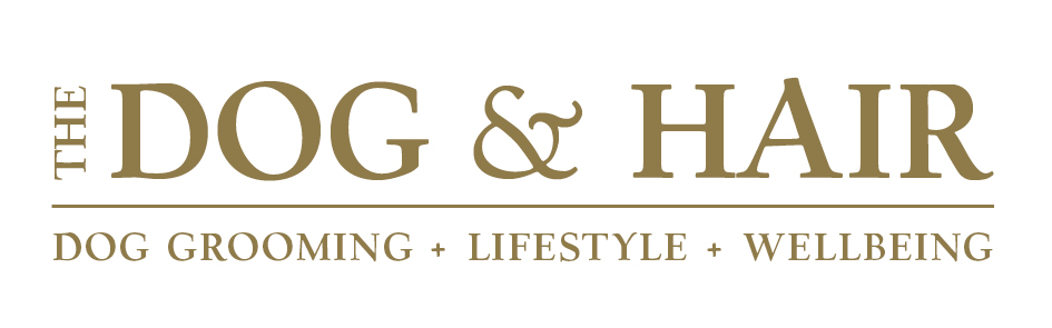 Dog & Hair Logo